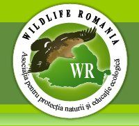 Wildlife Romania